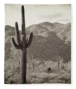 Arizona Desert Fleece Blanket