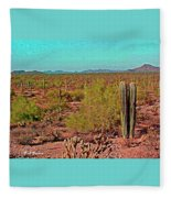 Arizona Desert Nice Place For A Walk Fleece Blanket