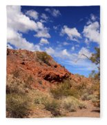 Arizona Red Rock Fleece Blanket