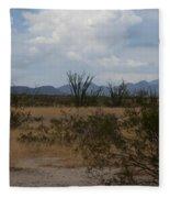 Arizona Rest Stop Fleece Blanket