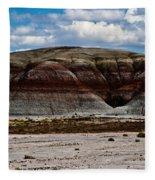 Arizona's Painted Desert #3 Fleece Blanket