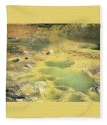 art 688 Eliot Porter Fleece Blanket