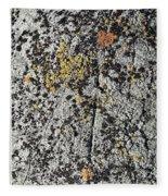 art 744 Eliot Porter Fleece Blanket