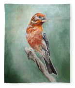 Male House Finch Fleece Blanket