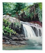 Asa Wright Falls      Sold Fleece Blanket