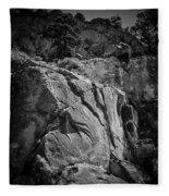 Ascent Of The Spirit Fleece Blanket