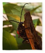 Asending Beetle Fleece Blanket