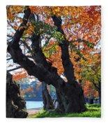 Asian Cherry Trees Of Fall Fleece Blanket