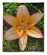 Asiatic Lily With Poster Edges Fleece Blanket