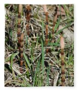 Asparagus In The Wild Fleece Blanket