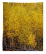 Aspen Fall 2 Fleece Blanket