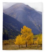 Aspen Fall 4 Fleece Blanket