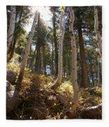 Aspen Glen Fleece Blanket