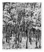 Aspen In Snow Black And White Fleece Blanket