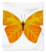 Aspen Leaf Butterfly 3 Fleece Blanket