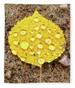 Aspen Rain Fleece Blanket