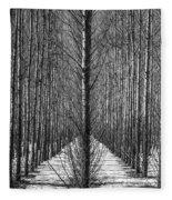 Aspen Rows Fleece Blanket