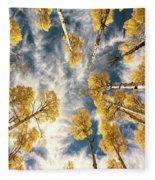 Aspen Tops Towards The Sky Vintage  Fleece Blanket