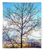 Aspen Tree At Sunset Fleece Blanket