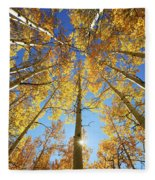 Aspen Tree Canopy 2 Fleece Blanket