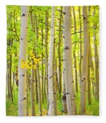 Aspen Tree Forest Autumn Time Portrait Fleece Blanket