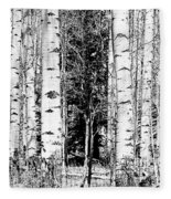 Aspens And The Pine Black And White Fine Art Print Fleece Blanket