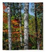 Aspens In Fall Forest Fleece Blanket
