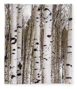 Aspens In Winter Panorama - Colorado Fleece Blanket