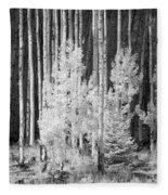 Aspens Ir 0713 Fleece Blanket
