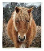Assateague Island Horse Miekes Noelani Fleece Blanket