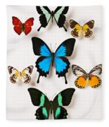 Assorted Butterflies Fleece Blanket