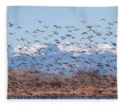 At Barr Lake Fleece Blanket