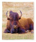 A Buffalo Staring Fleece Blanket