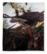 At The Nest Fleece Blanket