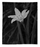 Atamasco Lily II Fleece Blanket