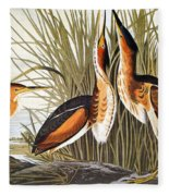 Audubon: Bittern Fleece Blanket