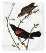 Audubon: Blackbird Fleece Blanket
