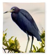 Audubon Blue Fleece Blanket