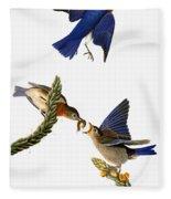 Audubon: Bluebird Fleece Blanket