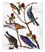 Audubon: Bluebirds Fleece Blanket