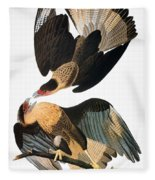 Audubon: Caracara, 1827-38 Fleece Blanket