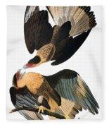 Audubon: Caracara, 1827-38 Fleece Blanket