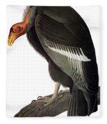 Audubon: Condor Fleece Blanket