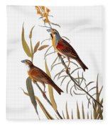 Audubon: Dickcissel Fleece Blanket
