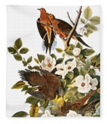 Audubon Dove Fleece Blanket