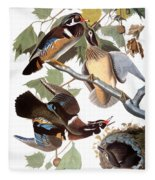 Audubon: Duck Fleece Blanket