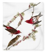 Audubon: Finch, (1827-38) Fleece Blanket