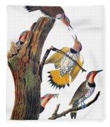 Audubon: Flicker Fleece Blanket