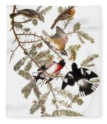 Audubon: Grosbeak Fleece Blanket