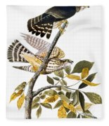 Audubon: Hawk Fleece Blanket